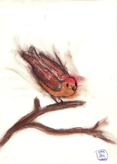 Oiseau de pastel 1