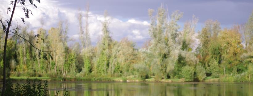 ciel et étang