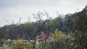 Vue du parc Letna