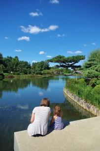 Contemplant le jardin japonais des Botanic Gardens de Chicago