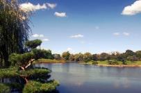 Botanic Gardens de Chicago